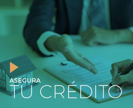 seguro credito