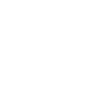 icono seguro bicicleta serenus